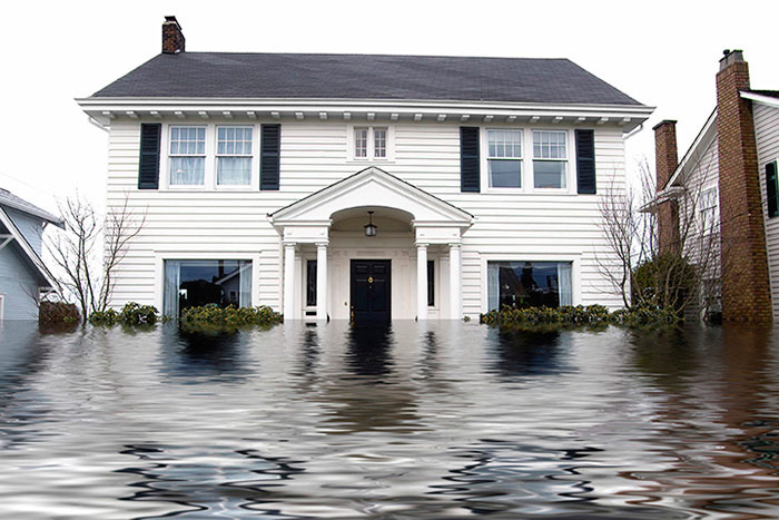 Chem-Dry Provides Water Damage Restoration Services